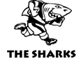 Hollywoodbets the Sharks